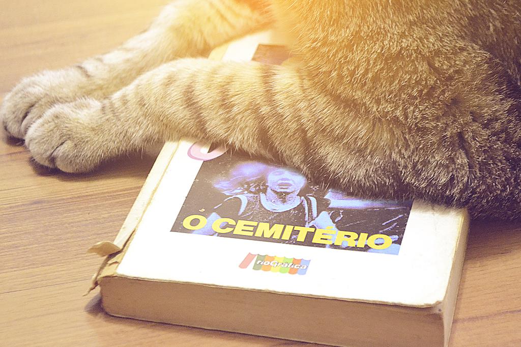 pet-sematary-book